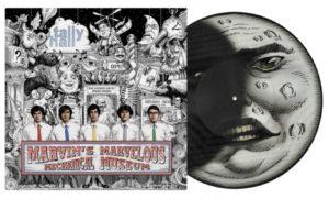 Mr. Sun/Mr. Moon (Picture Disc) LP